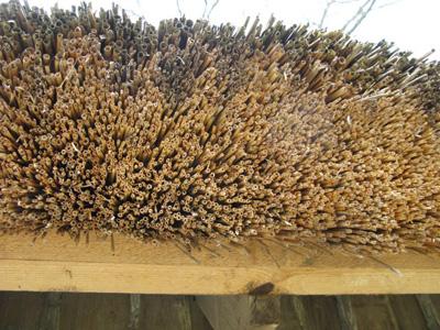 Meriruoko on perinteinen, kestävä ja kaunis kattomateriaali.